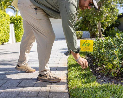 lawn maintenance company palm beach county fl